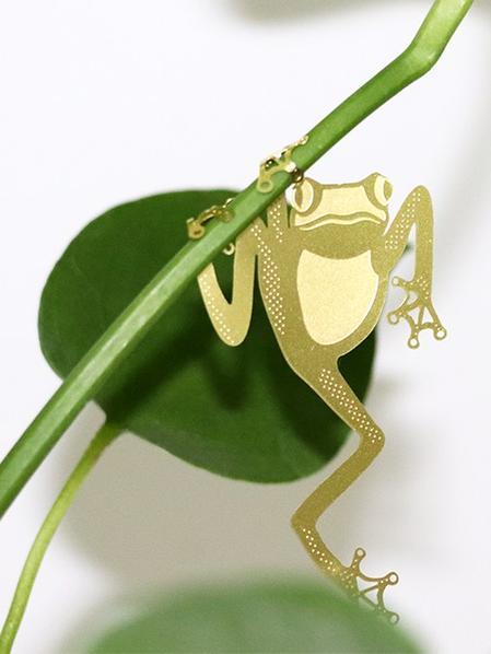 Plant Animal Grenouille