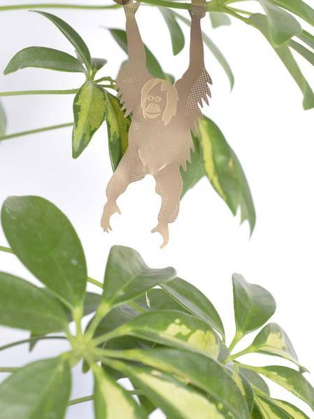 Plant Animal - Orangutan