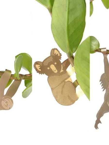 S/3 Plant Animals - Paresseux & co