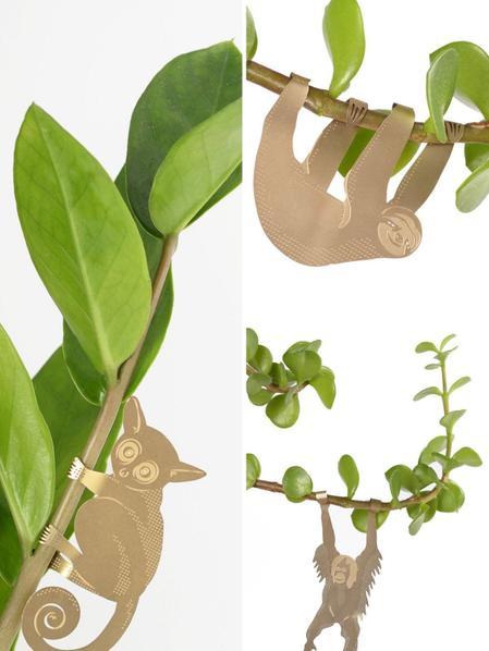 Plant Animal Trio