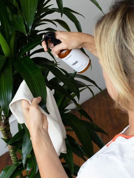 Organic Black Soap Spray